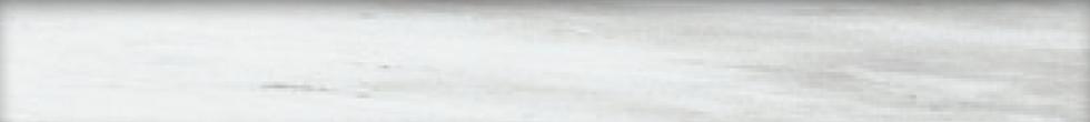 Grey Bullnose