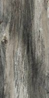 Citrus Midnight Natural 12 X 24 RECTIFIED EDGE