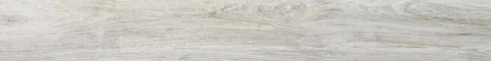 Cypress Mist 3 X 24 Bullnose