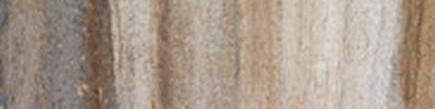 Tivoli Foresta 3 X 12 Bullnose